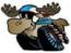 avatar_DerangedMoose